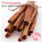 DIY Beauty | Cinnamon Spot Treatment